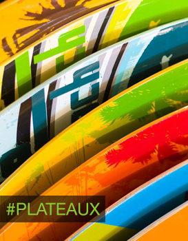 plateaux_decks_skateboards_naturasurfshop